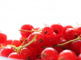 Johannisbeeren, rot | Hochgeladen von: JuliFisch