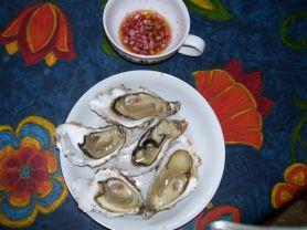 Austern | Hochgeladen von: Radhexe