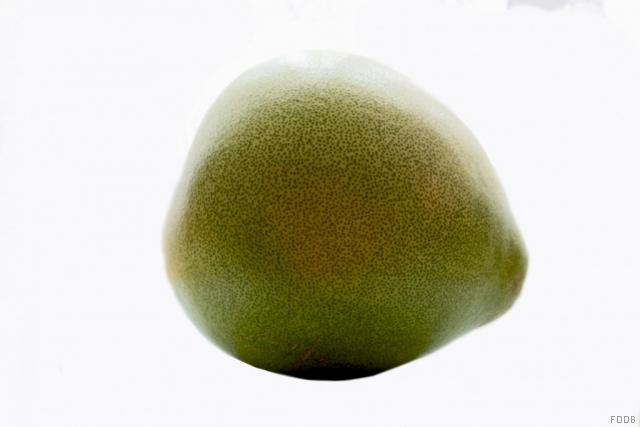 Pomelo, frisch | Hochgeladen von: JuliFisch