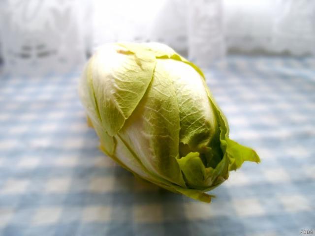 Chicore, roh | Hochgeladen von: JuliFisch