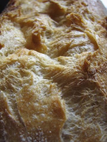 Weizenbrötchen | Hochgeladen von: malufi89