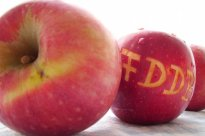 Apfel, Fuji - frisch