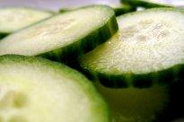 Salatgurke | Hochgeladen von: JuliFisch
