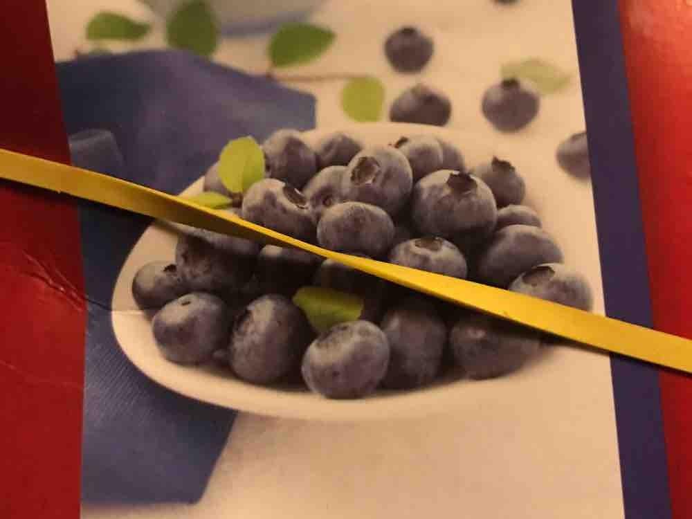 Heidelbeeren von TimEimer | Hochgeladen von: TimEimer