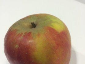 Holsteiner Cox, Apfel | Hochgeladen von: twestphal