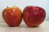 Braeburn Apfel | Hochgeladen von: iNutrition