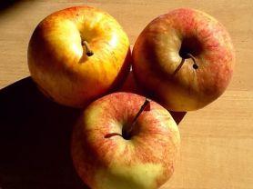 Apfel Jonagold, süß | Hochgeladen von: mattalan