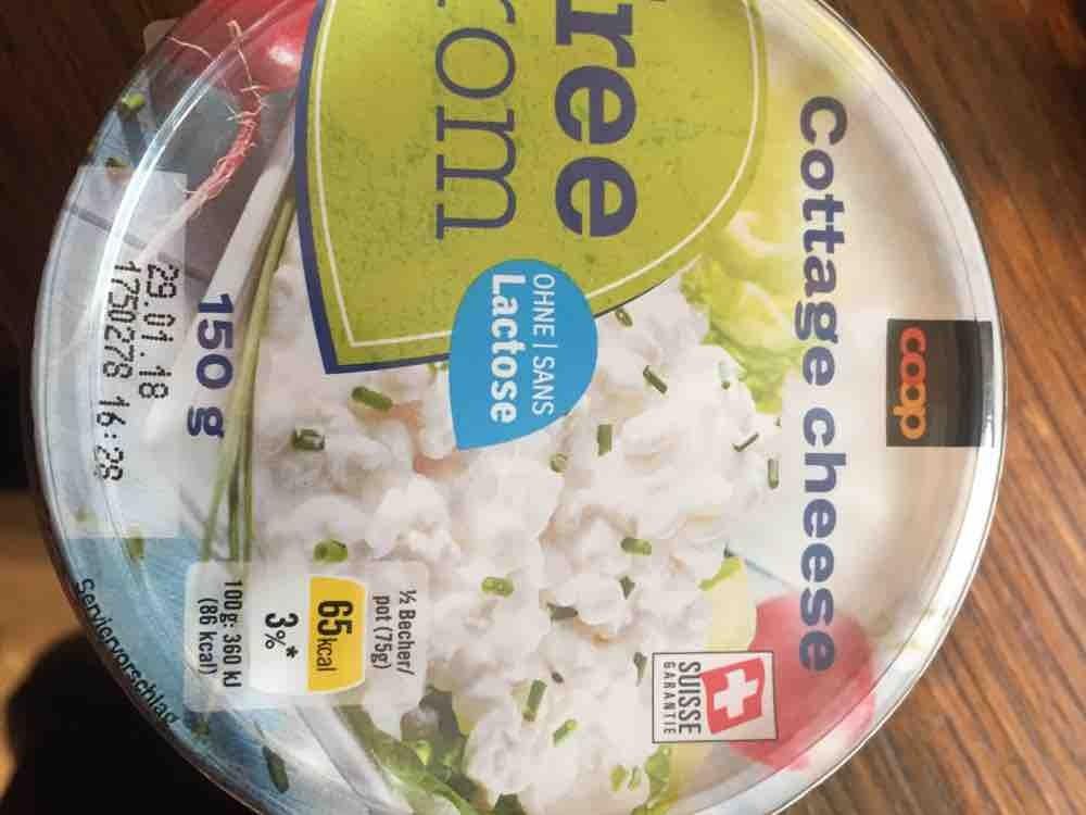 Cottage cheese, Nature von Valeisator | Hochgeladen von: Valeisator