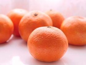 Mandarine | Hochgeladen von: JuliFisch
