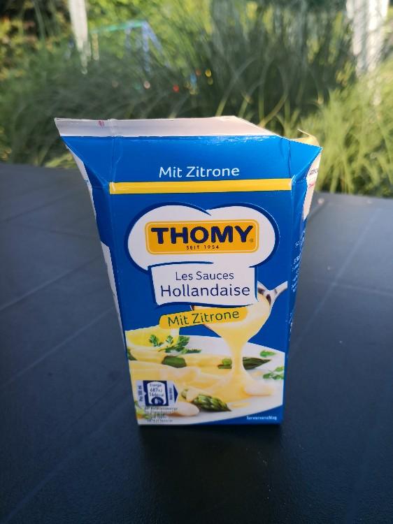 Les Sauces Zitronen-Hollandaise von King84211 | Hochgeladen von: King84211