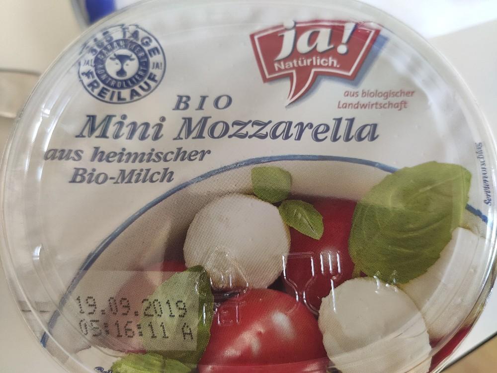 Mini Mozzarella, Bio von h1z | Hochgeladen von: h1z