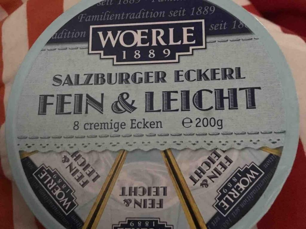 Schmelzkäse - Salzburger Eckerl, Fein & Leicht von Hellboy833   Hochgeladen von: Hellboy833