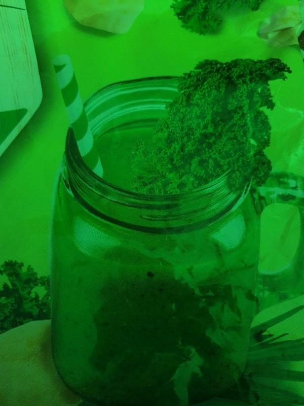 Greenland Erntefrisch Smoothie-Mix, Green Reviver von Steinbeisser87   Hochgeladen von: Steinbeisser87