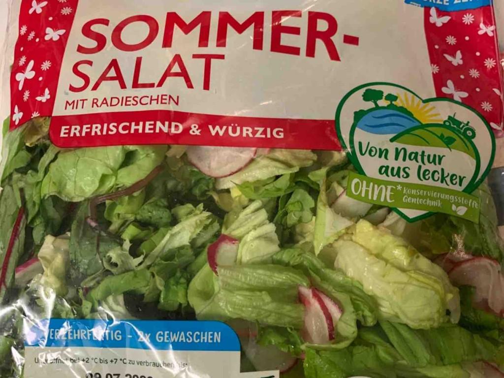 Sommer-Salat, mit Radieschen von JaySpee | Hochgeladen von: JaySpee