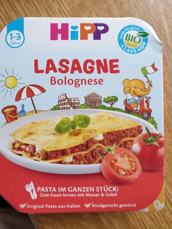 Lasagne Bolognese von Steffi747370   Hochgeladen von: Steffi747370
