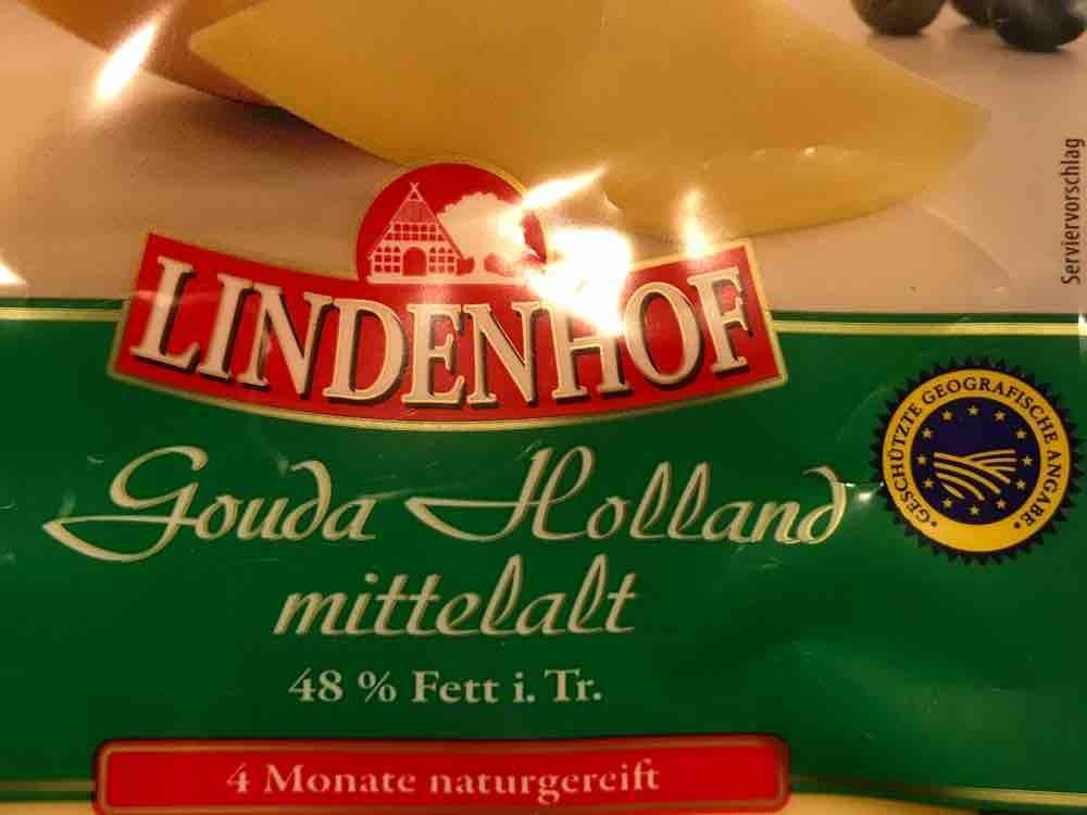 Gouda Holland mittelalt von ustumm   Hochgeladen von: ustumm