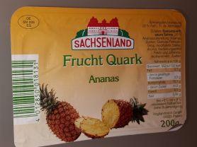 Fruchtquark Ananas, Ananas   Hochgeladen von: olafu