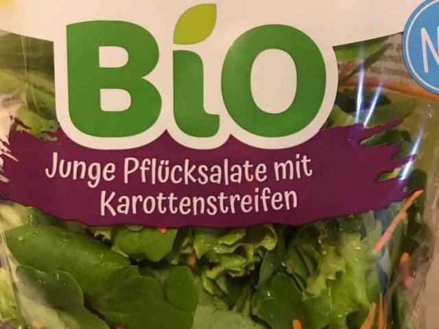 Bio Pflcksalate mit Karottenstreifen von pucciscookie | Hochgeladen von: pucciscookie