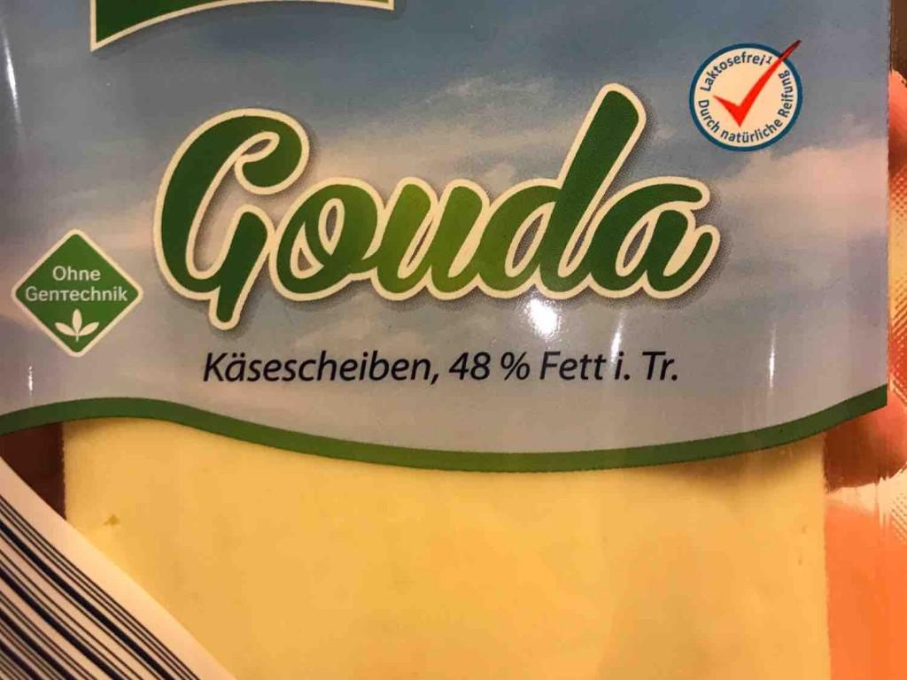 Gouda 48% Fett i. Tr. von Tobs945 | Hochgeladen von: Tobs945