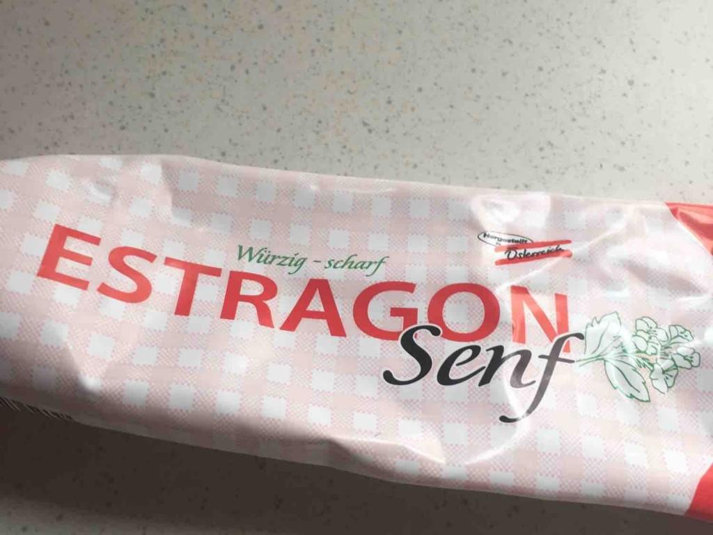 Estragonsenf, würzig scharf von moldascha1   Hochgeladen von: moldascha1