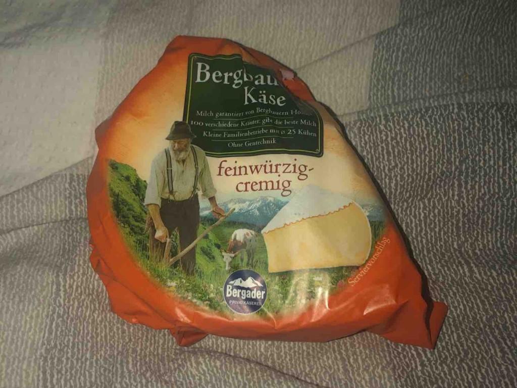 Bergbauern Käse (feinwürzig-cremig) von tjacelinaa   Hochgeladen von: tjacelinaa