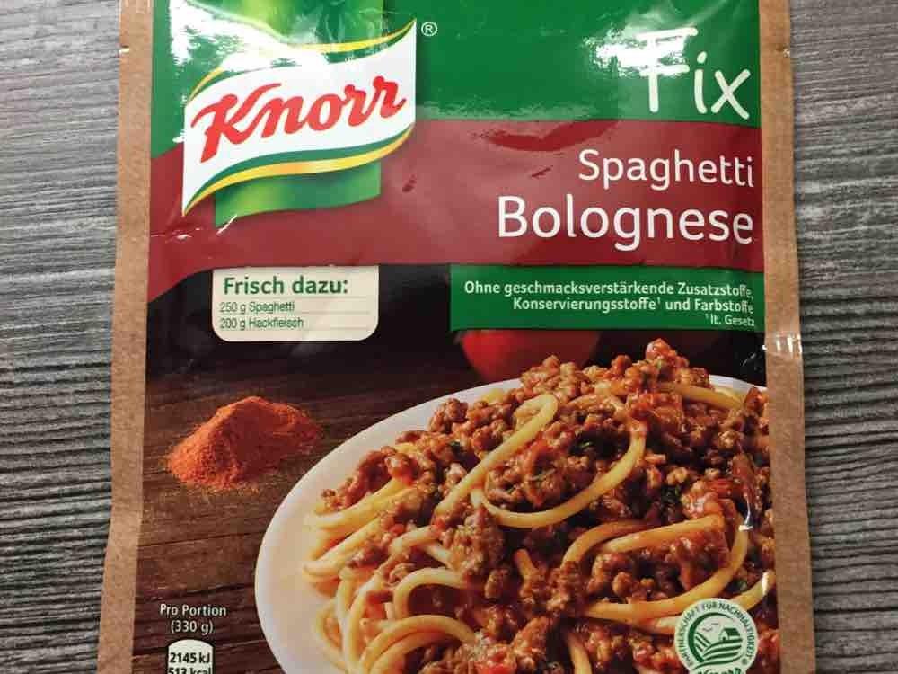 Fix Spaghetti Bolognese von nicksbuick66 | Hochgeladen von: nicksbuick66