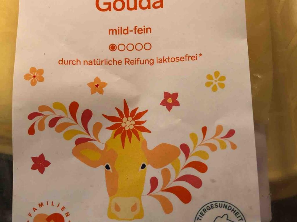 Premium Gouda von WienTina   Hochgeladen von: WienTina