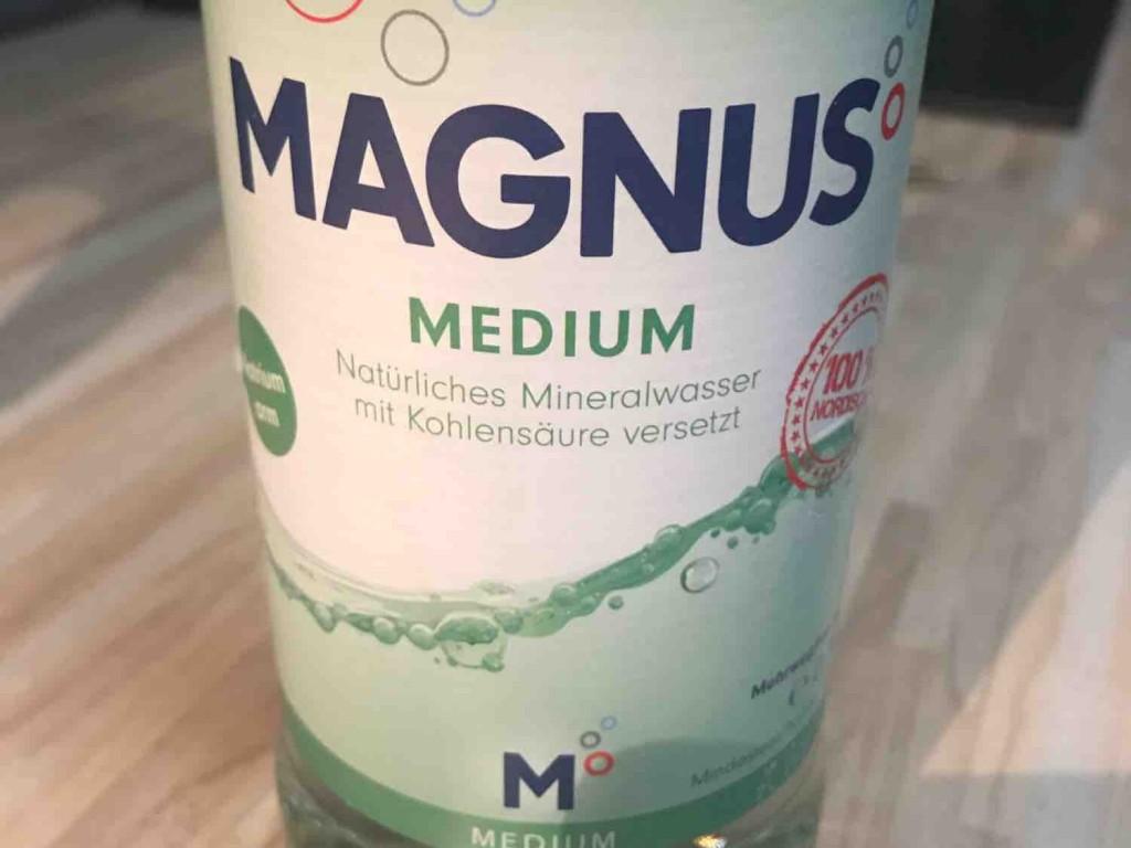 Magnus medium von AnMu1973 | Hochgeladen von: AnMu1973