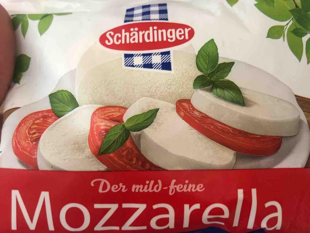 österreichischer mozzarella von momo22 | Hochgeladen von: momo22