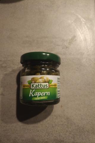 Kapern (Kattus) von Hoai2904 | Hochgeladen von: Hoai2904