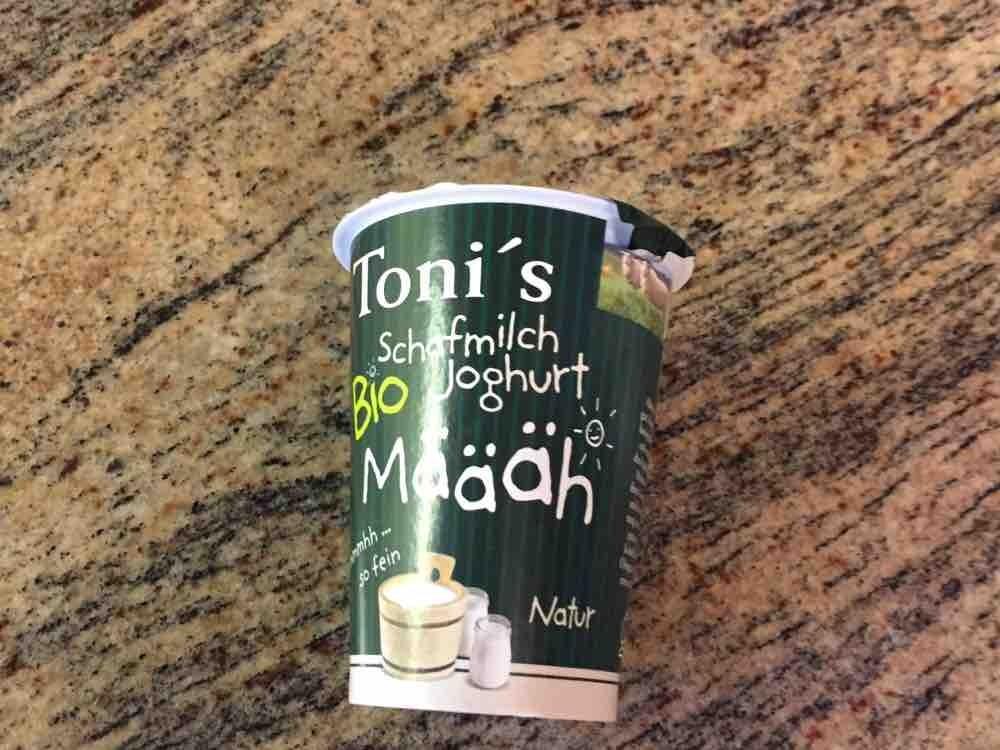 Schafmilch Joghurt, Natur von ing123fr | Hochgeladen von: ing123fr