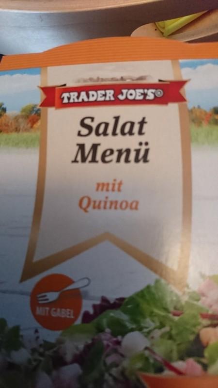 Salat Menü, mit Quinoa und Senf-Dressing von Tupf | Hochgeladen von: Tupf