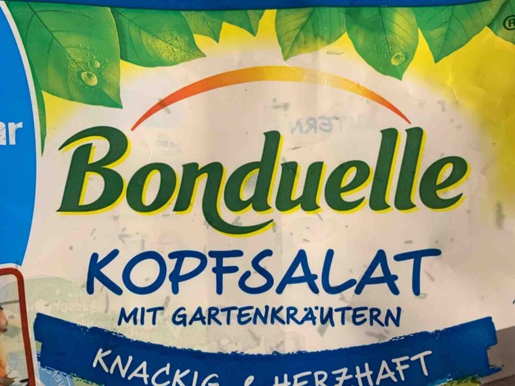 Kopfsalat mit Gartenkräutern (Bonduelle) von infoweb161 | Hochgeladen von: infoweb161