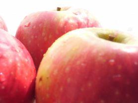 Apfel, Braeburn, Granny Smith usw. | Hochgeladen von: JuliFisch