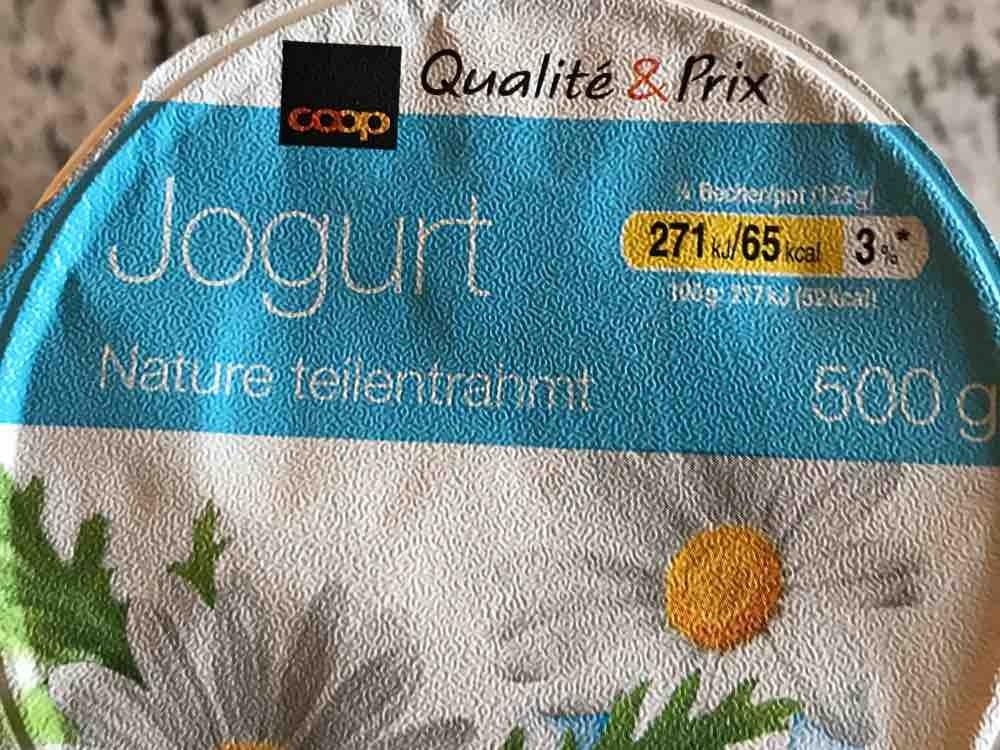 Joghurt, 1,5 % Fett, Natur von RMoser | Hochgeladen von: RMoser