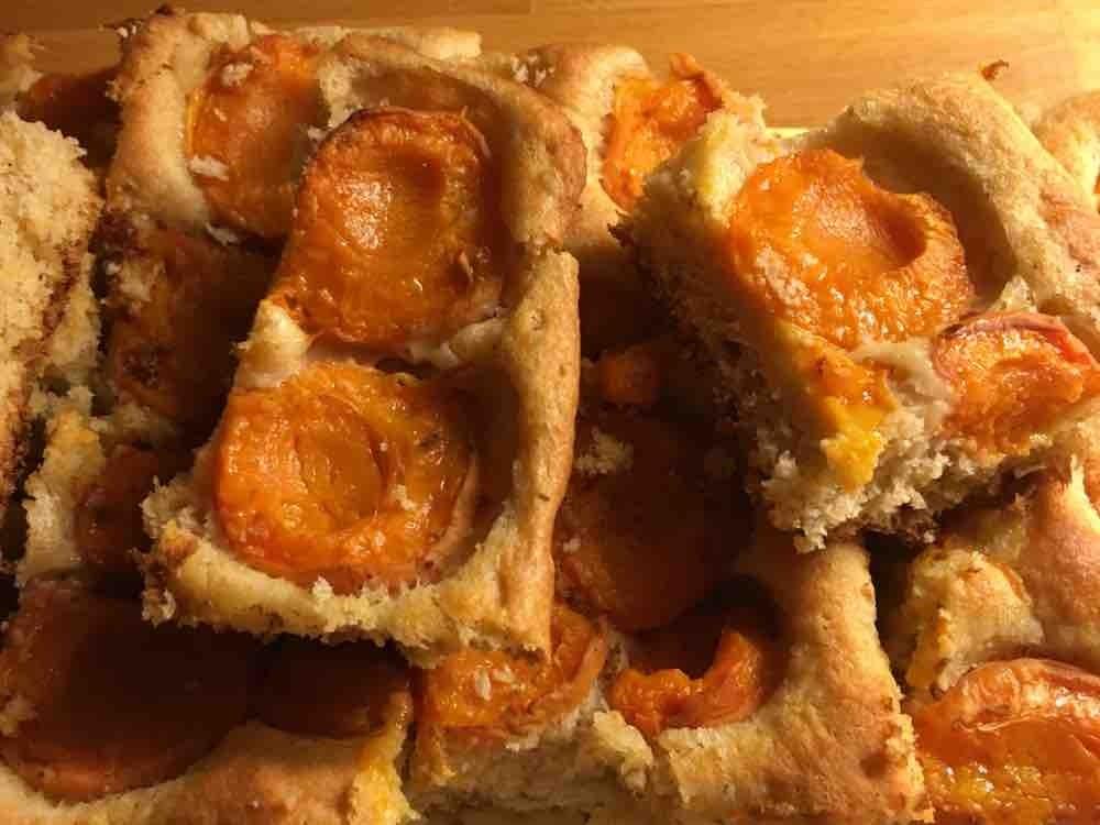 Marillenkuchen (Mama) von nGeraldn | Hochgeladen von: nGeraldn