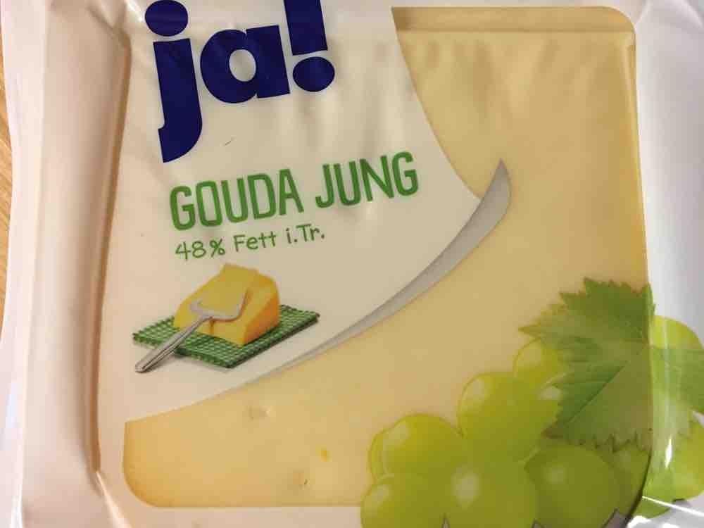 Gouda jung, 48% Fett i.Tr. von klickworker | Hochgeladen von: klickworker