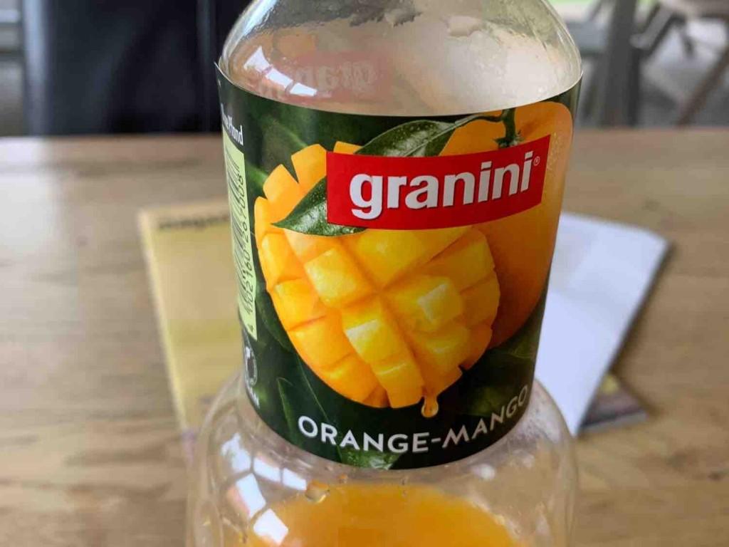 Orange Mango saft von uwe.baudendistel   Hochgeladen von: uwe.baudendistel