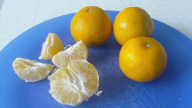 Mandarinen | Hochgeladen von: Connymaxi