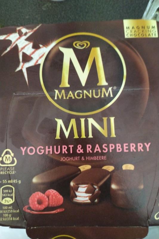 Magnum Joghurt Himbeere
