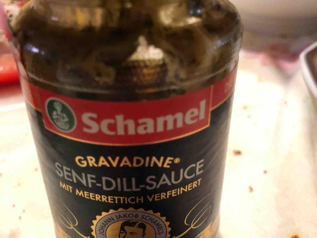 Senf-Dill-Sauce, mit Meerrettich und Honig von HaGla | Hochgeladen von: HaGla