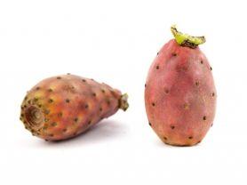 Kaktusfeige, roh | Hochgeladen von: julifisch
