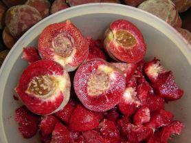 pfirsichkompott   Hochgeladen von: cantaloupe