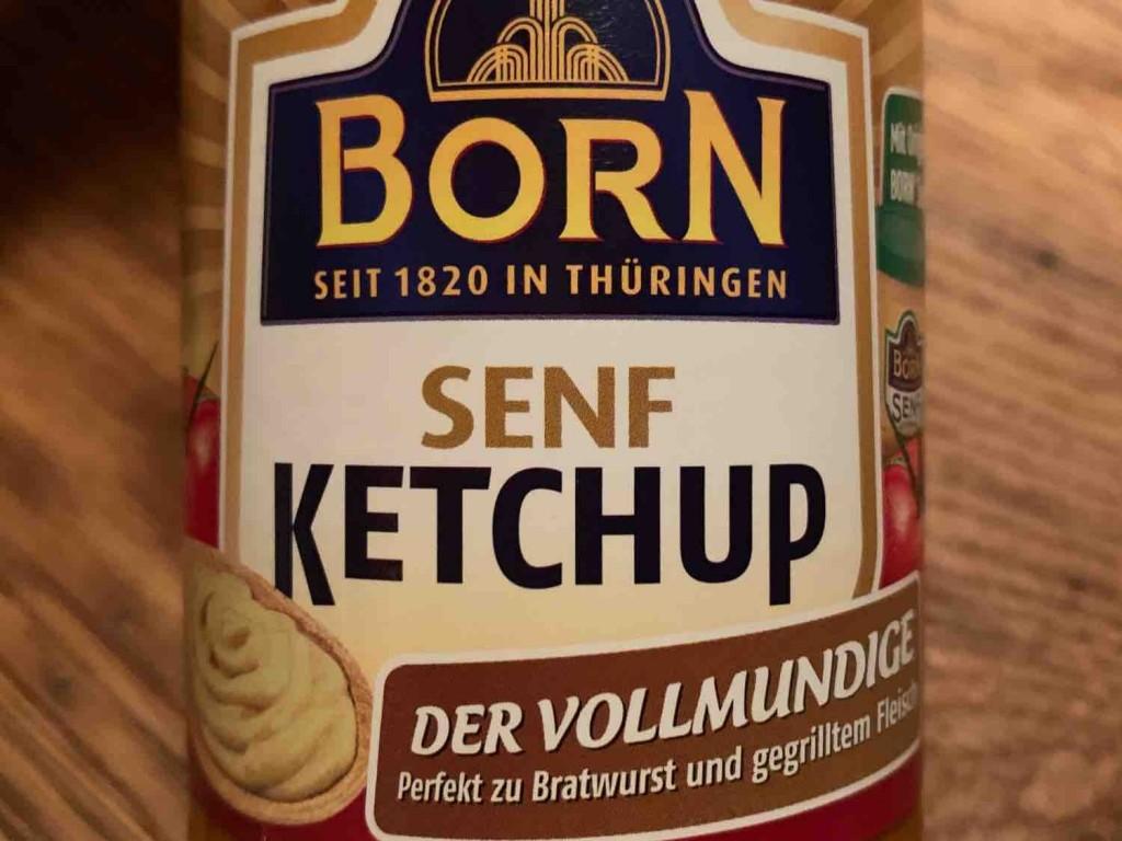 Senf Ketchup von SteveMuc | Hochgeladen von: SteveMuc