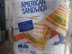 American Sandwich, Weizen | Hochgeladen von: Jojo1