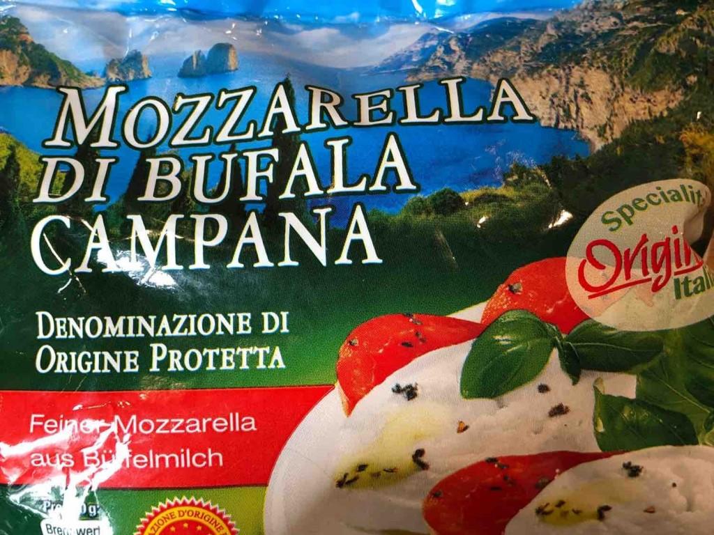 Mozzarella di Bufala Campana, Büffel Mozzarella von ck1991446   Hochgeladen von: ck1991446