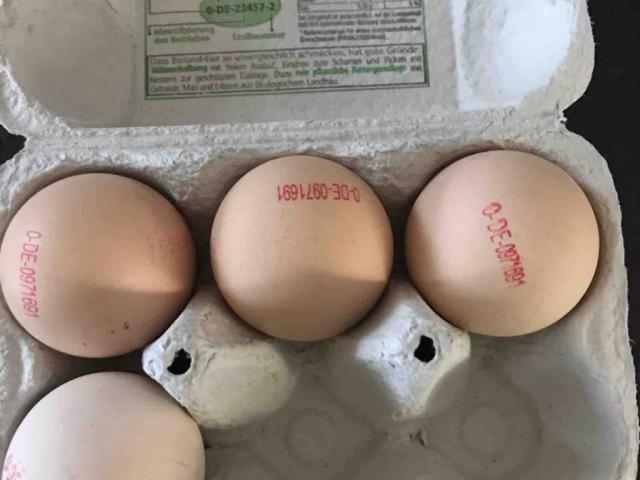 Ei, vom Huhn von lvennewa809 | Hochgeladen von: lvennewa809