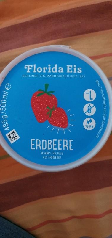 Florida-Eis, Erdbeere von ing892 | Hochgeladen von: ing892