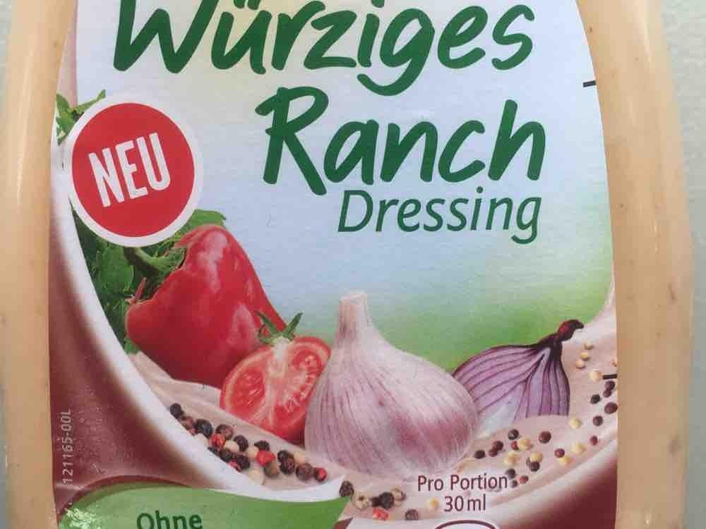 Würziges Ranch Dressing von blümchen904 | Hochgeladen von: blümchen904