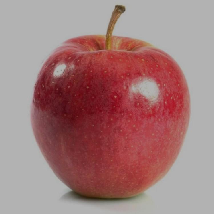 Apfel, Tenroy, Royal Gala von Tribi   Hochgeladen von: Tribi